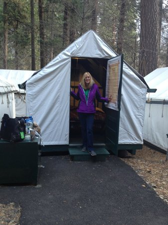 Half Dome Village: My tent and bear box.
