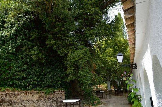 Refugio del Segura: Terraza