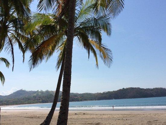 Fenix Hotel - On The Beach: The Beach