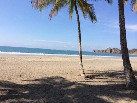 Fenix Hotel - On The Beach: Playa Carillo