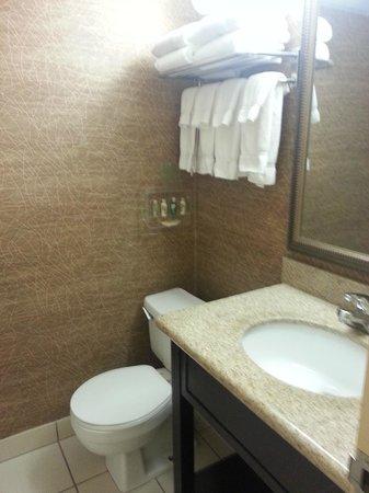Holiday Inn Sioux City: Bathroom