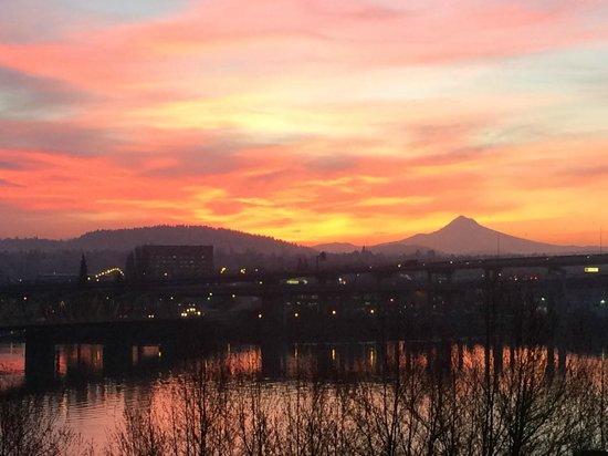Portland Marriott Downtown Waterfront : Sunrise!
