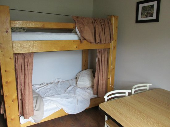 Hostel Bear: Notre chambre privée