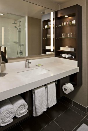 Delta Hotels by Marriott Winnipeg: ModeClub Bathroom with Spa Shower
