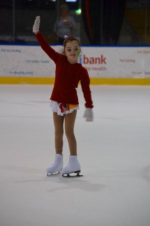 O'Brien Group Arena: Too much fun- what ever level of skating experience!!