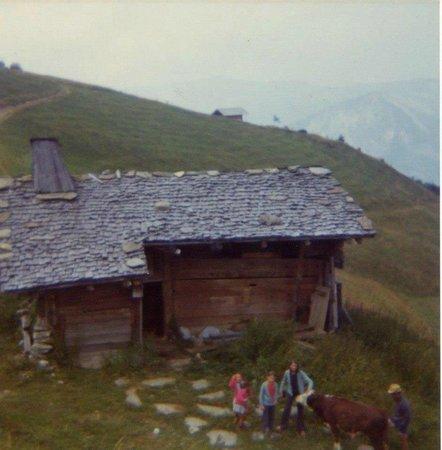 Le Petit Tetras : anciennement l'alpage du petit tetras