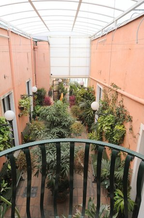 Hotel Villa Romeo: giardino botanico