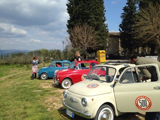 Florenz, Italien: In the olive groves