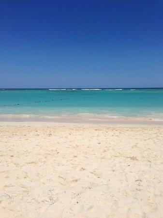 Luxury Bahia Principe Ambar Don Pablo Collection : beach