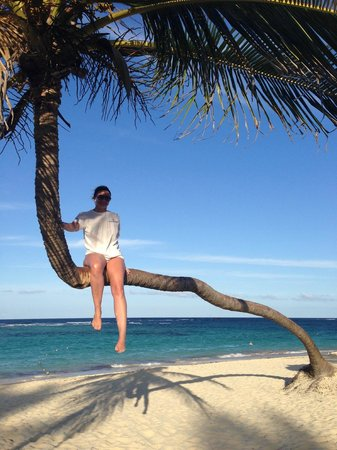 Luxury Bahia Principe Ambar Blue Don Pablo Collection : tree climbing the most photographed tree on the beach
