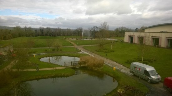 Lyrath Estate Hotel & Spa: View from the room