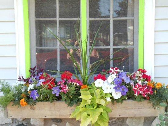 Bay Port Lodging: Flowerbox window