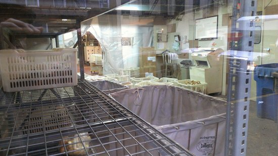 Sullivan Street Bakery: Production area
