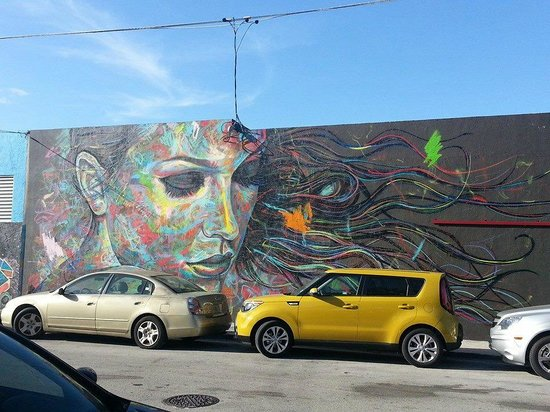 Wynwood: Could not remember the name, but it was gorgeous.