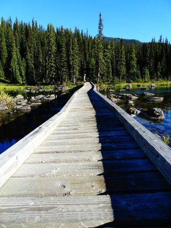 Shadow Lake Lodge: The boardwalk
