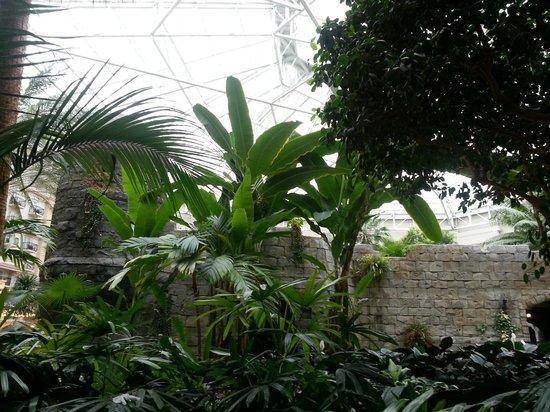 Gaylord Palms Resort & Convention Center: View of Castillo de San Marcos