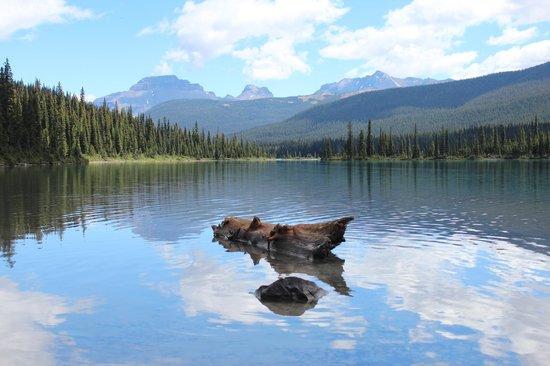 Shadow Lake Lodge: Lake view