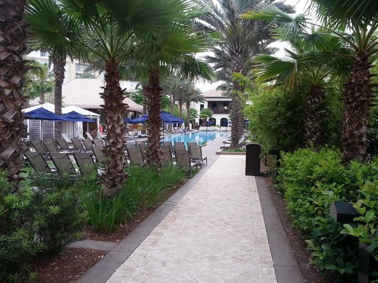 Gaylord Palms Resort & Convention Center: Cypress Springs Pool area