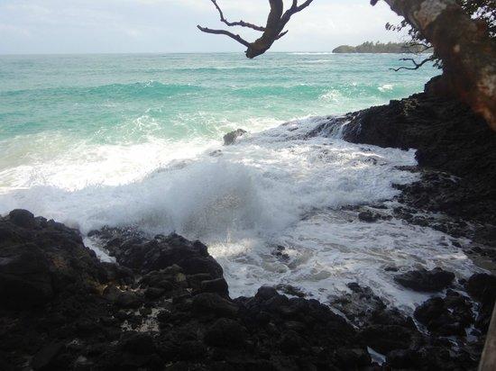 Meeres-Nationalpark Insel Bastimentos (Parque Nacional Marino Isla Bastimentos): el mirador