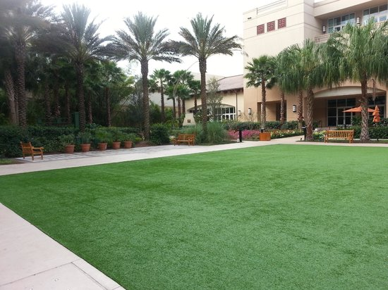 Gaylord Palms Resort & Convention Center: Coquina Lawn