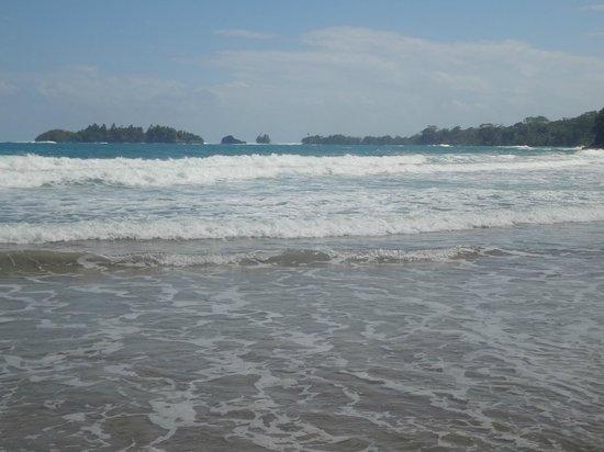Parque Nacional Marino Isla Bastimentos : el mar que es bien breve