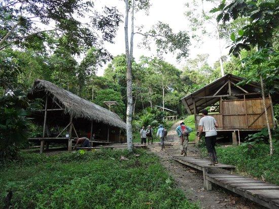Huaorani Ecolodge: the campsite