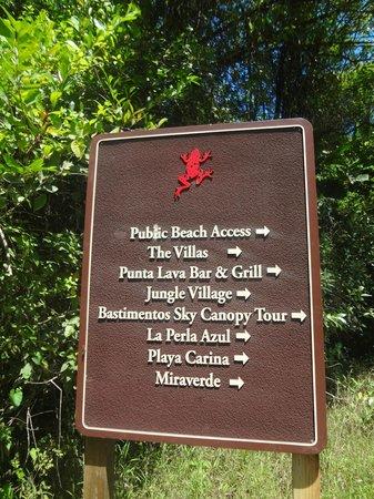 Parque Nacional Marino Isla Bastimentos : sendero camino a la playa