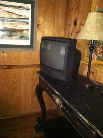 Mountain Air Cabins: downstairs room