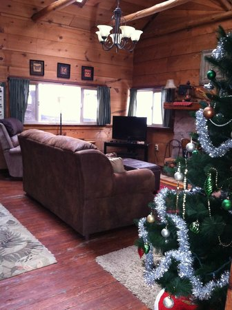 Mountain Air Cabins: living room