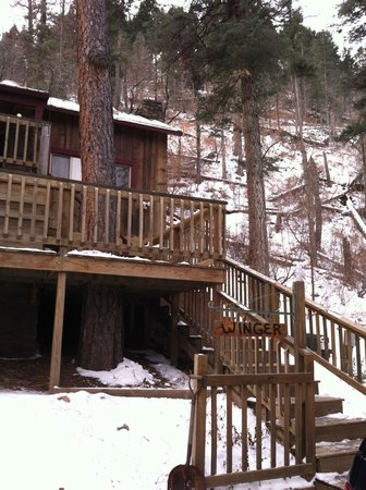 Mountain Air Cabins: outside view from driveway