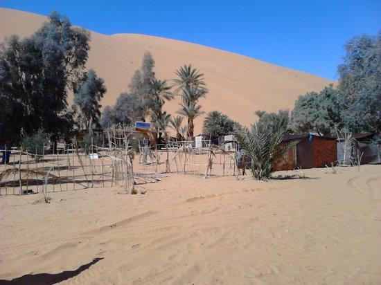 Auberge Chez Tihri 'Suerte Loca': oasis