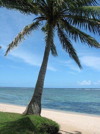 Bedarra Beach Inn : Private part of beach