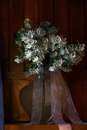 Milleunanotte: flowers
