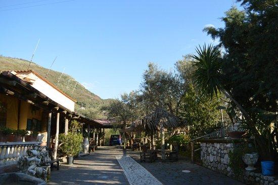 Agriturismo La Chiana: Intorno