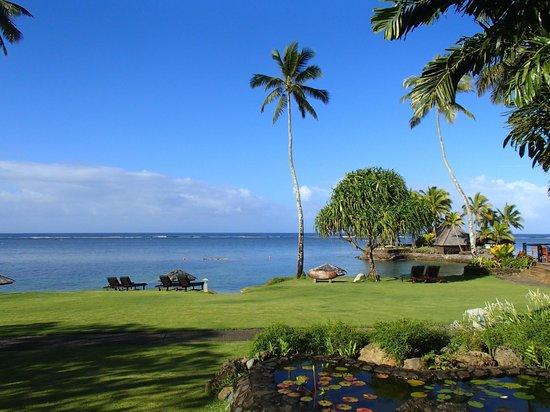 The Warwick Fiji: The grounds
