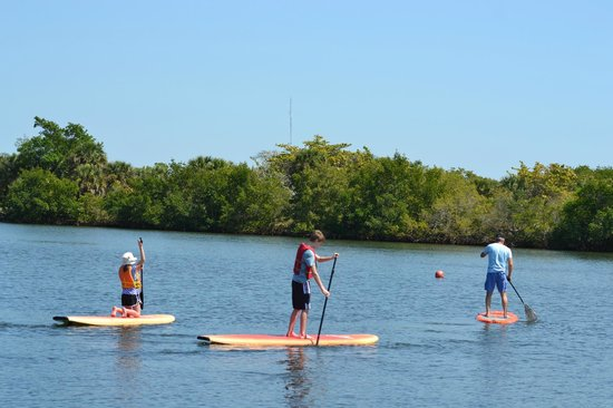 Barefoot Beach Preserve : Stand Up Paddleboarding is a MUST do