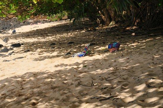 Marc at Princeville Pali Ke Kua: Pali Ke Kua beach. Sun for some. Shade for others.