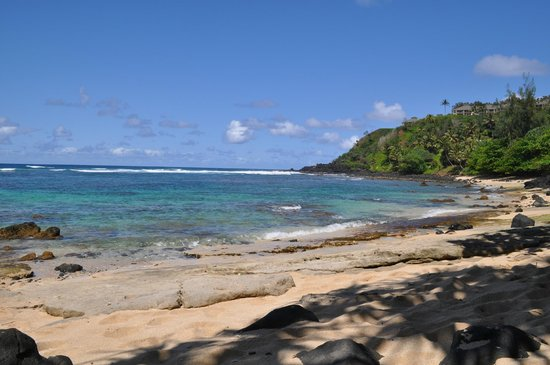 Marc at Princeville Pali Ke Kua : Pali Ke Kua beach. We snorkelled with turtles here!