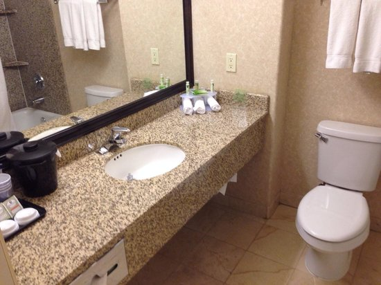 Holiday Inn Express Hotel & Suites: Sink area.