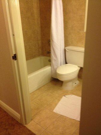 Crowne Plaza Hotel Executive Center Baton Rouge: Spacious bathroom