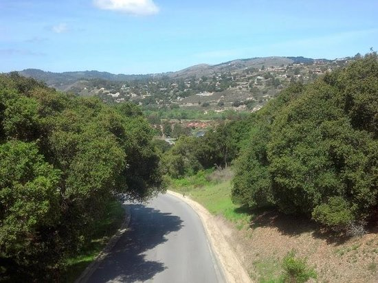 Carmel Valley Ranch: View from the bridge