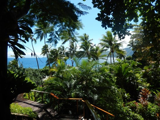 Royal Davui Island Resort: View walking to pool from dining area