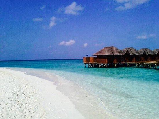 Fihalhohi Island Resort: Panorama