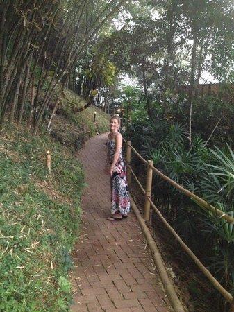 Four Seasons Tented Camp Golden Triangle: Path to Burma bar.
