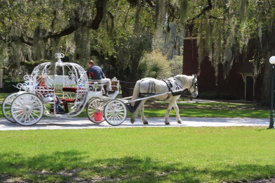 Jekyll Island Historic District: Take a carriage ride like Cinderella !