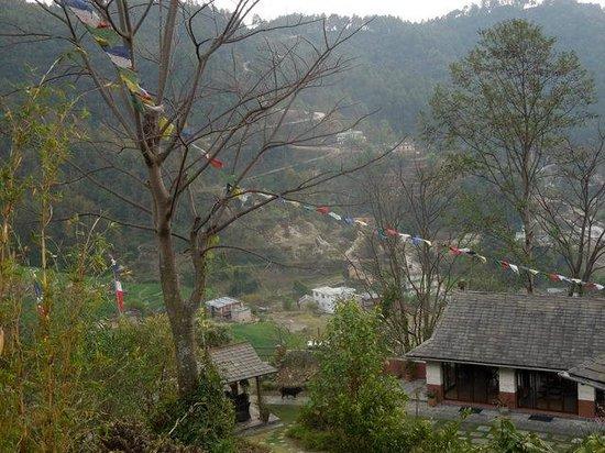 Chandra Ban Retreat: View from breakfast patio