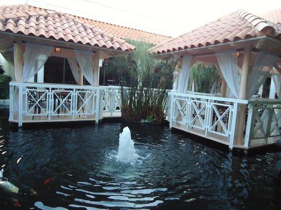 Melia Coco Beach : lobby