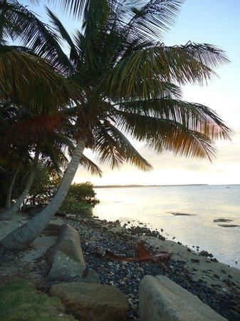 Gran Melia Golf Resort Puerto Rico : beach
