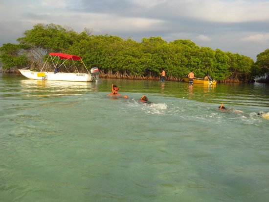 Parguera Water Sports and Adventures: Snorkeling in the shallow water