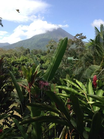 Arenal Manoa Hotel : View from dining area